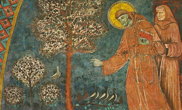 Citaten Franciscus Van Assisi : Franciscus van assisi minderbroeders conventuelen